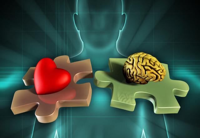 Emotionale-Intelligenz-Andrea Danti-Shutterstock.com